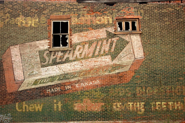 a wall with spearmint